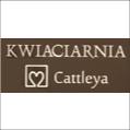 Kwiaciarnia Cattleya